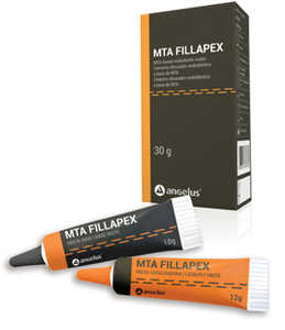 MTA-FILLAPEX Root Canal Sealer