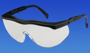 Safety Glasses Bifocal (Palmero)